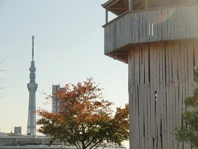 汐入タワーと東京スカイツリー