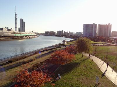 汐入タワーからの景色
