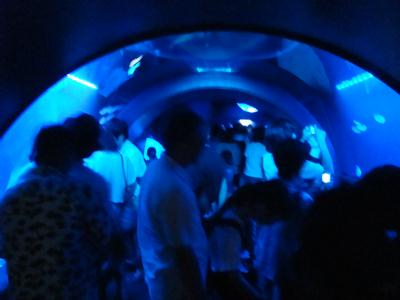 『サンシャイン水族館』クラゲトンネル