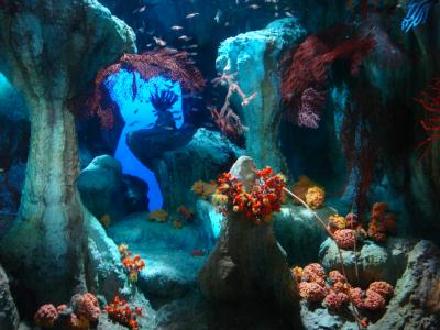 『サンシャイン水族館』