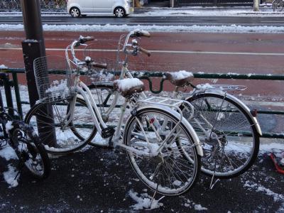 ほていや前の自転車も積もる・・・