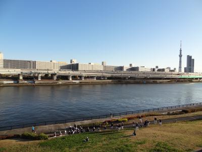 汐入タワーの展望台から見たスカイツリー