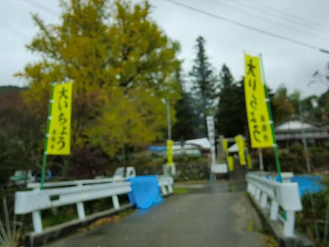長楽寺 大いちょう祭り(3)
