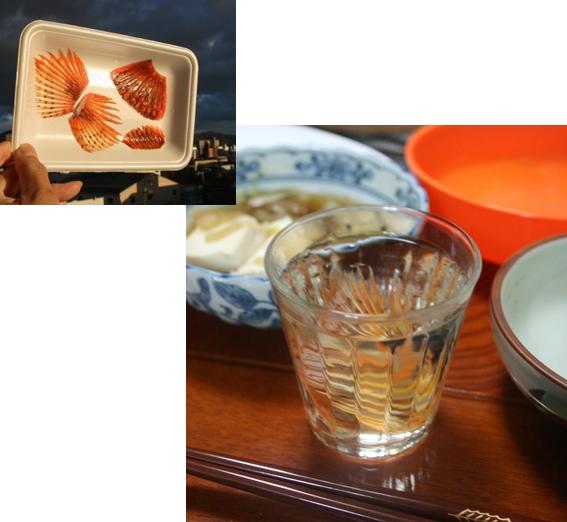 カサゴのヒレ酒 (567x522)