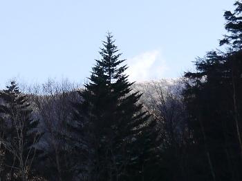 P1020029雪