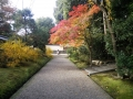 201411秋篠寺2