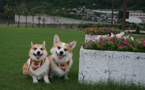 長崎にて1