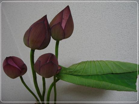 IMG_6723-1.jpg