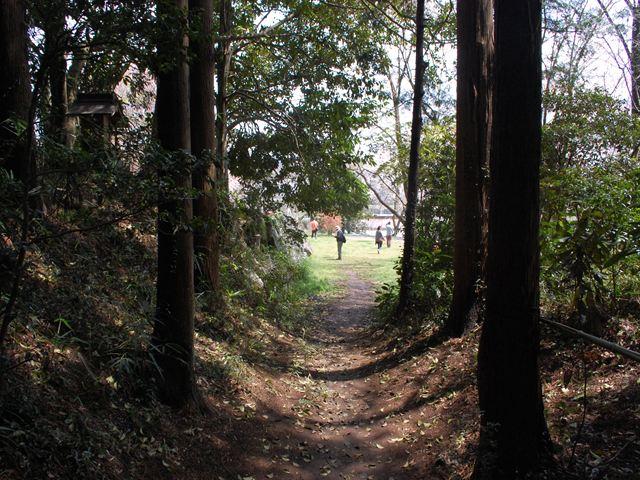 桜川神社3
