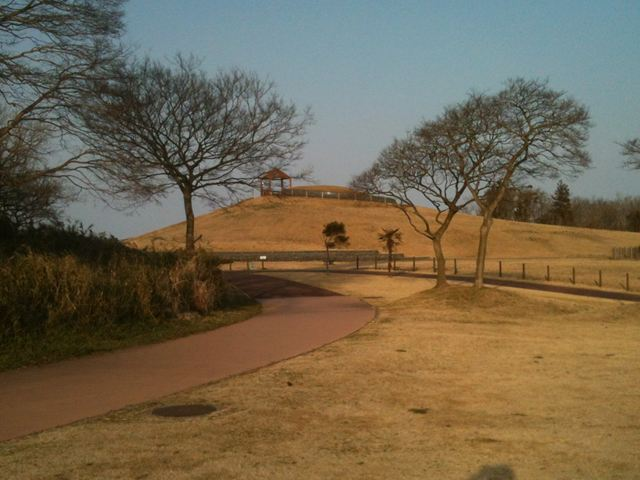 鹿島灘海浜公園5
