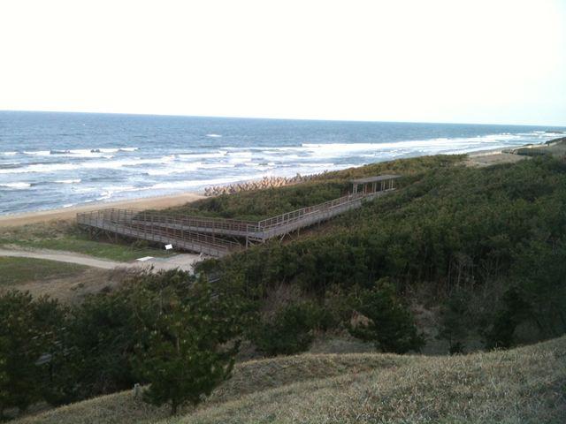鹿島灘海浜公園19