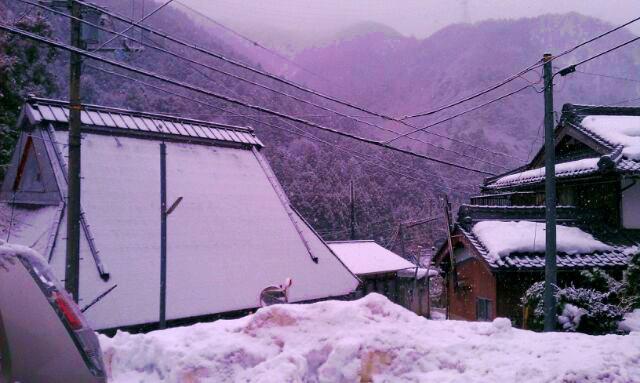 snow120104.jpg