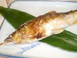 鮎塩焼き8