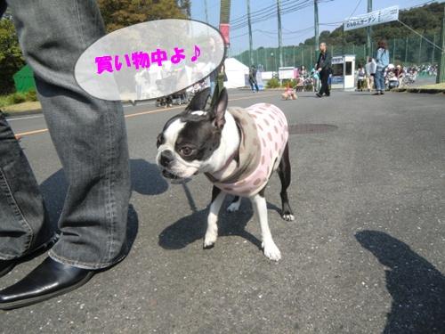 2011_1008_115610-CIMG6897.jpg