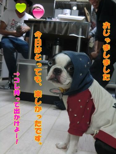 2011_1008_204838-CIMG6963.jpg