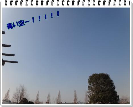 2012_0111_115634-DSC02425.jpg