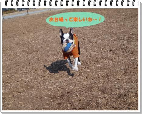 2012_0111_115801-DSC02428.jpg