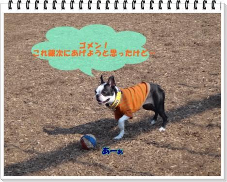 2012_0111_120520-DSC02429.jpg