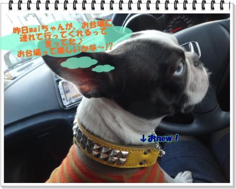 2012_0111_132225-DSC02438.jpg