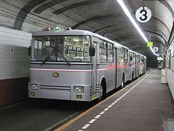 ブログ⑨大観望-トロリーバス