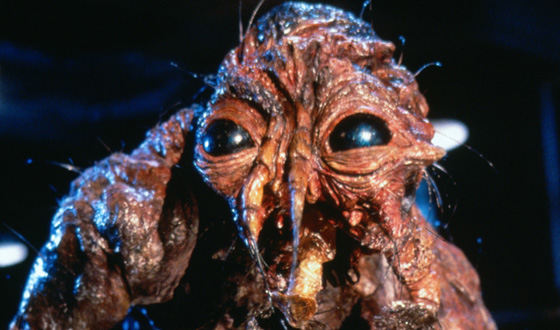 蠅人間の恐怖2