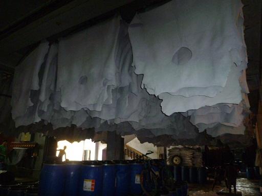 ハザリバーグの牛革加工工場の様子③