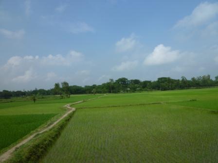 美しい田園風景