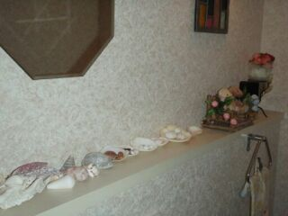 貝殻トイレ