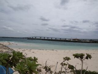 20111117クリマビーチ