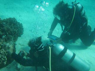 20111123クリマビーチ水中写真