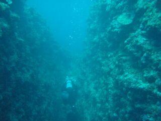20111125一の瀬ホールクレパス酒井さん