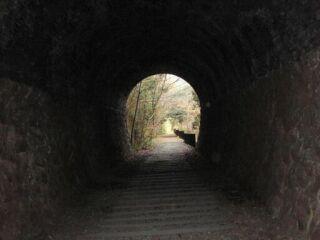 20121206廃線跡ハイクトンネル紅葉