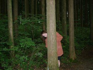 白神山地の森の中20020826