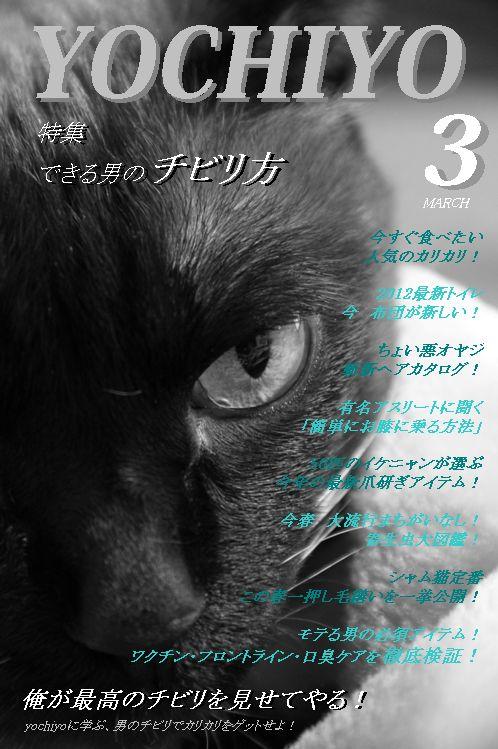 yochiyo3-2.jpg