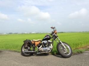 bike+5.jpg