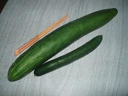2 Harvest 4-1