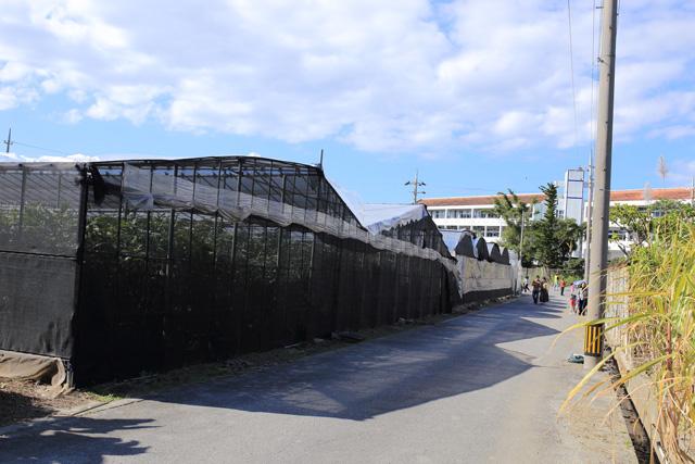ひまわりIN北中城2