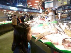 320fish.jpg