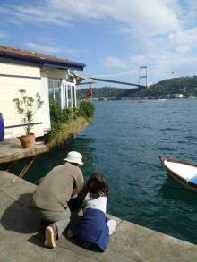 イスタンブール生活のABC-魚ウォッチング