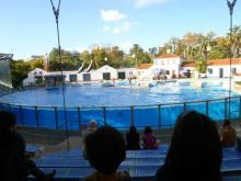 $イスタンブール生活のABC-動物園
