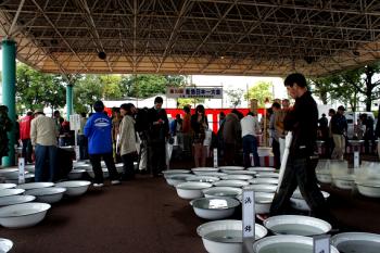 金魚日本一大会2012