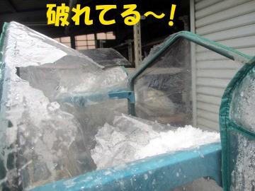 雪の被害5