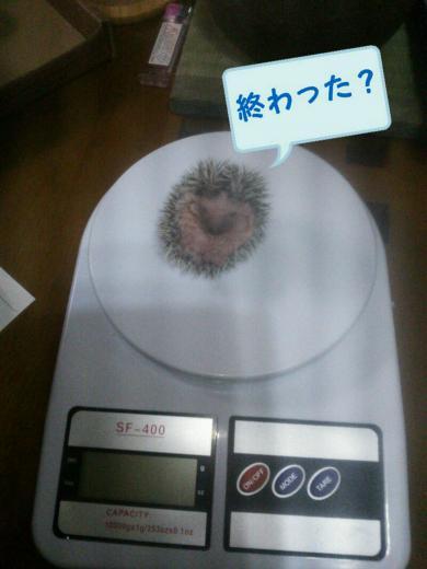 rakugaki_20141206114150178_convert_20141206152344.jpg