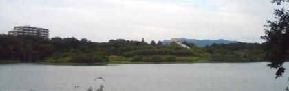 昆陽池_中の島now.jpg