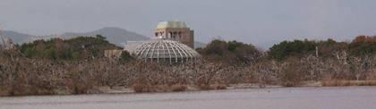 昆陽池_中の島2003.jpg