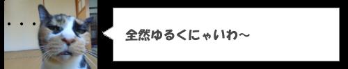 愛知県に全然ゆるくないゆるキャラがいることが判明