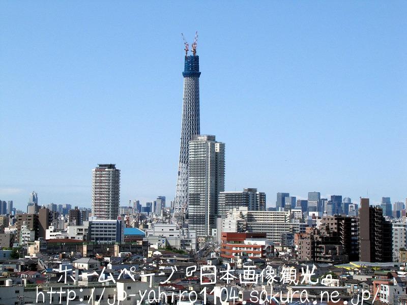 東京・浅草から見たスカイツリー
