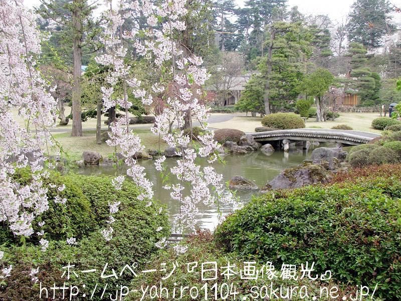 青森・喧騒から離れて・・・弘前の藤田記念庭園3