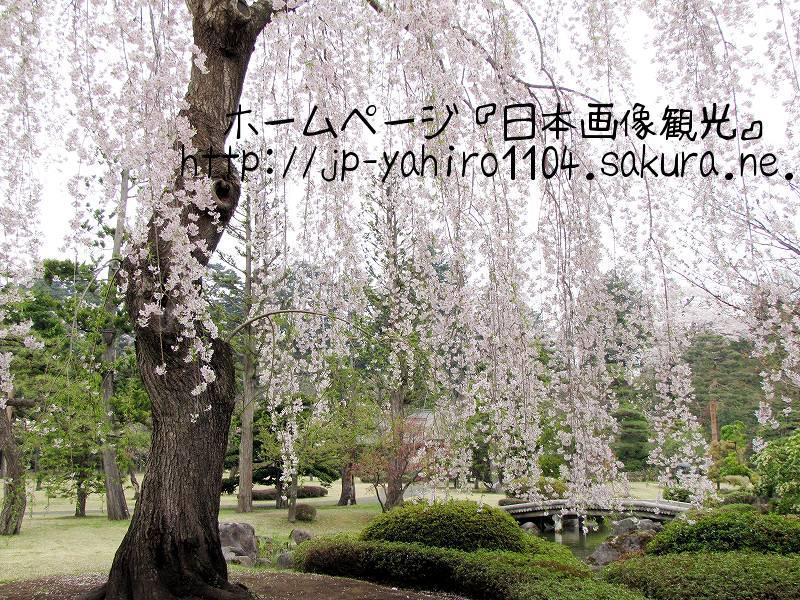 青森・喧騒から離れて・・・弘前の藤田記念庭園2