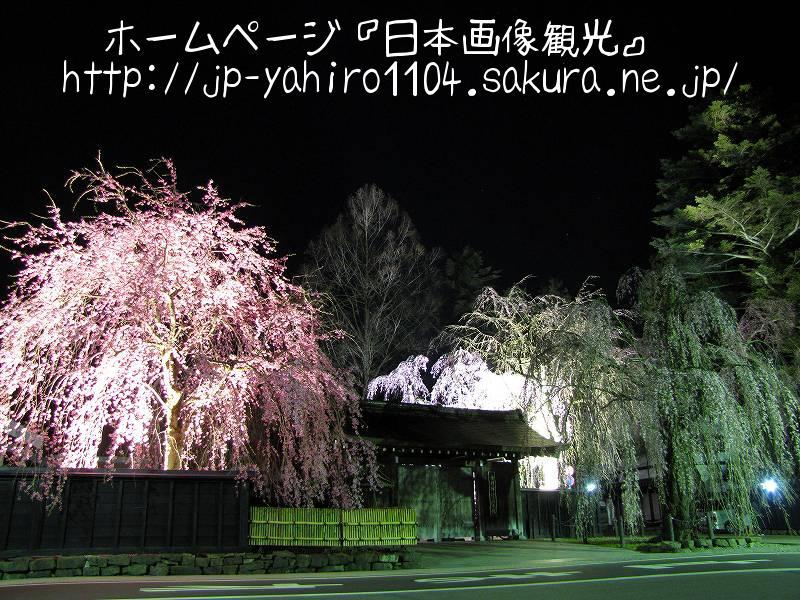 秋田・夜の角館武家屋敷1